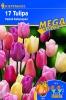 508514 / 9999 Tulipány Triumph pastelové tóny, směs 17 ks