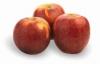 Jablka Melrose (krabice 17kg)