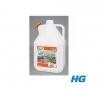 HG 52750 Odstraňovač zelených povlaků a mechů 5L