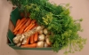 Bedýnka čerstvé zeleniny
